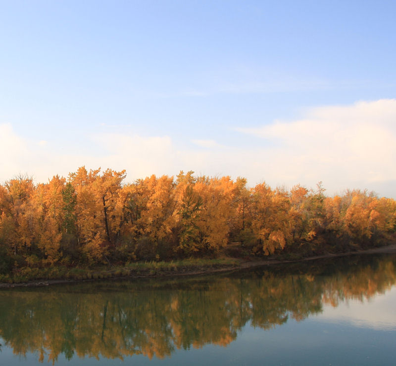 On a still Fall Day the River becomes a mirror.